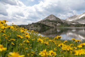 The Libby Creek Campgrounds Wyoming
