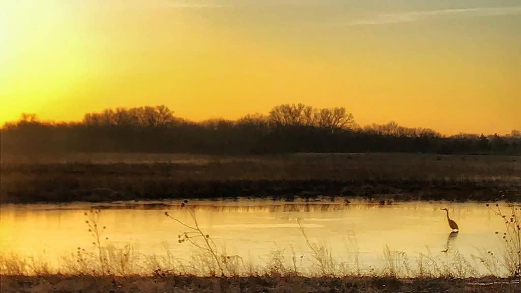 Baker Wetlands in Lawrence Kansas