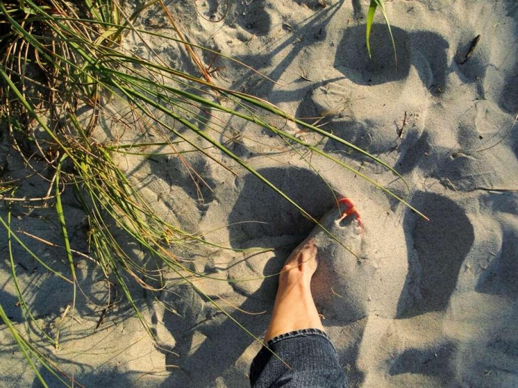 lori-wilson-park-cocoa-beach-credit-lauren-tjaden (4)