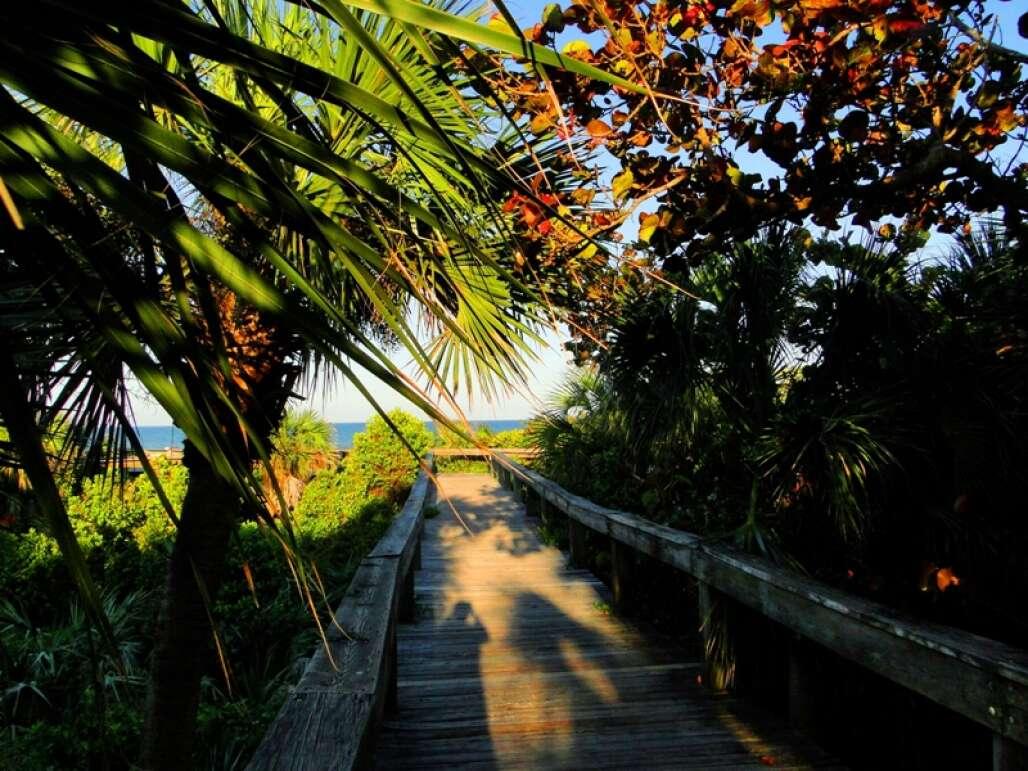 lori-wilson-park-cocoa-beach-credit-lauren-tjaden (3)