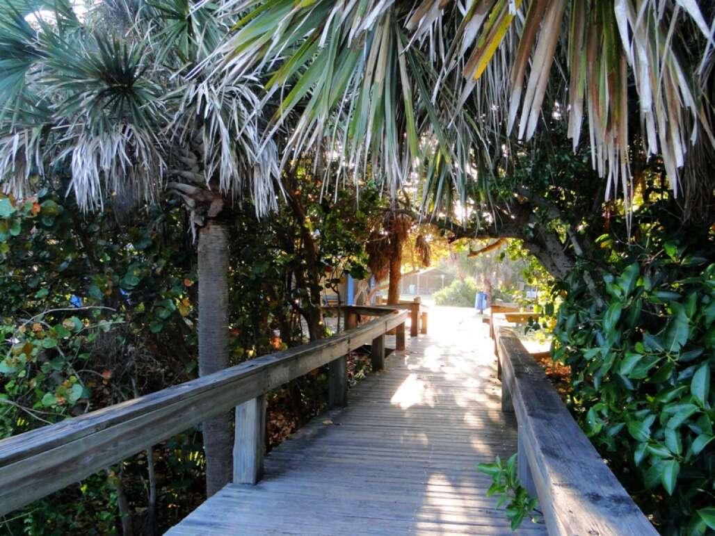 lori-wilson-park-cocoa-beach-credit-lauren-tjaden (1)