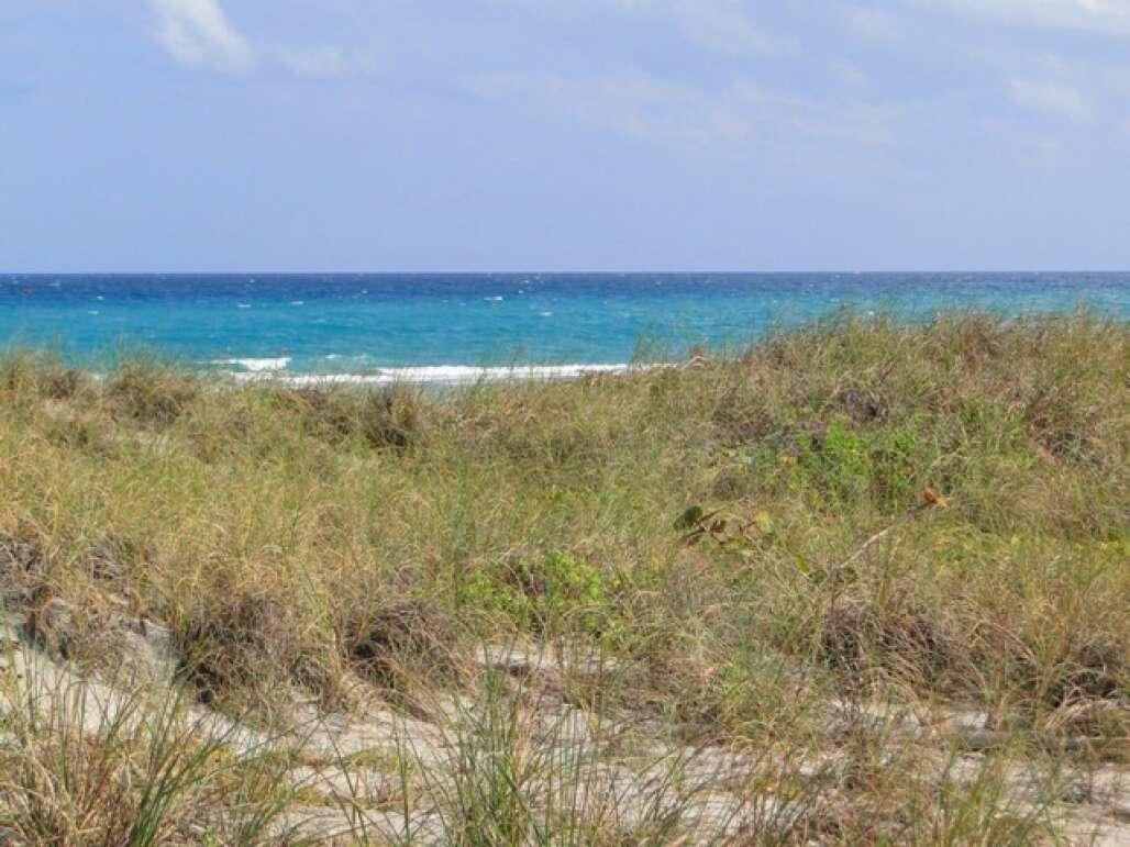 ten_floridas_top_beaches_credit_lauren_tjaden (1).JPG