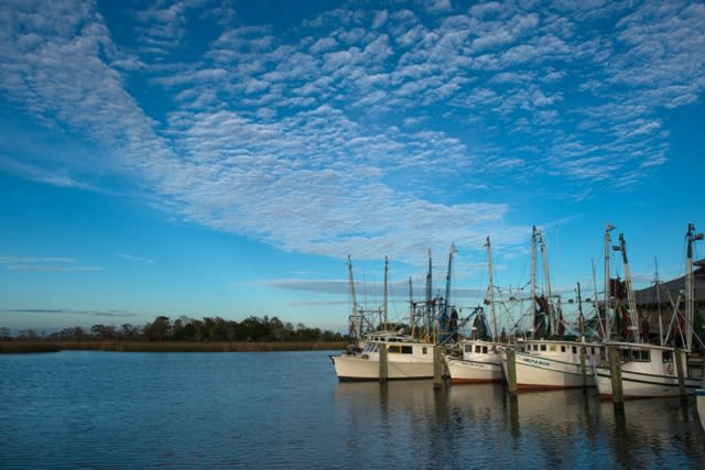 Boats parked along the Apalachicola river