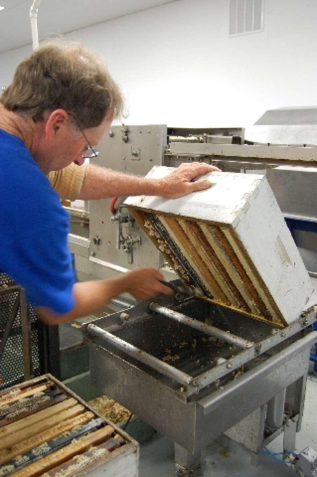 Tupelo Honey Harvesting