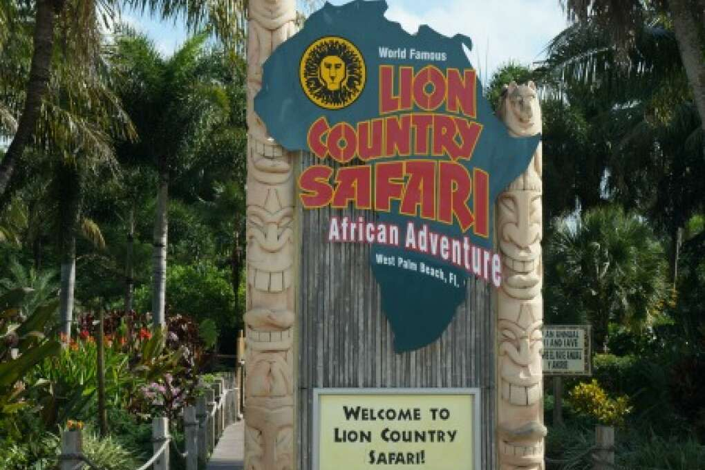 Welcome to the Lion Country Safari