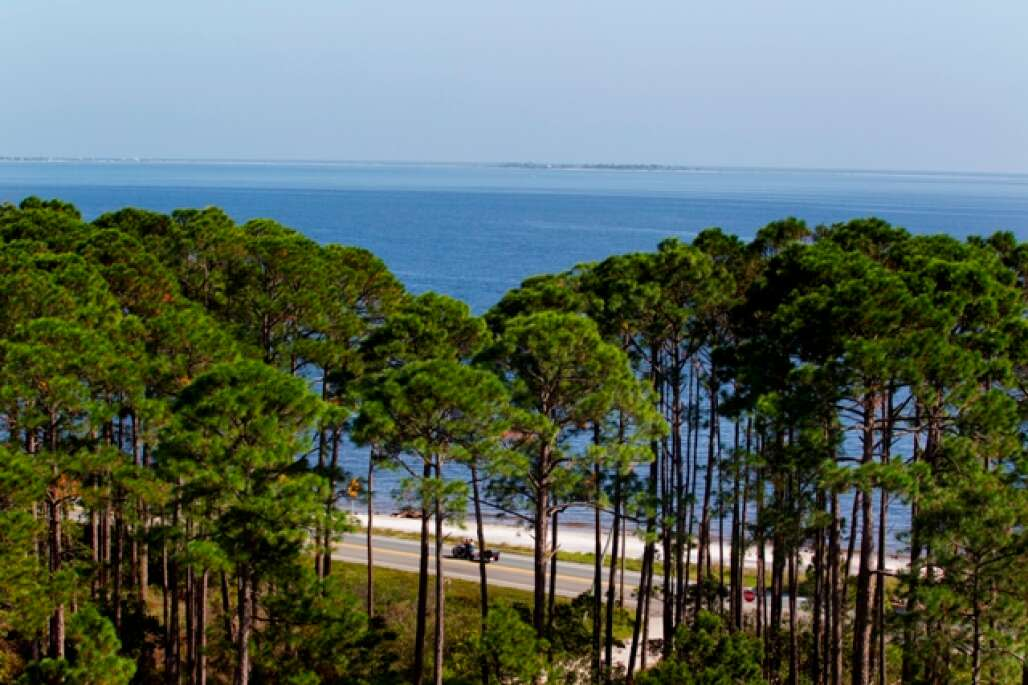 the big bend scenic byway south of Tallahassee
