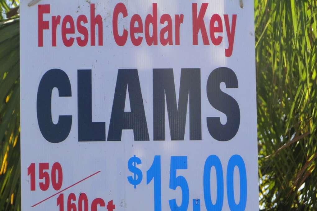 Cedar_key_credit_lauren_tjaden (12)
