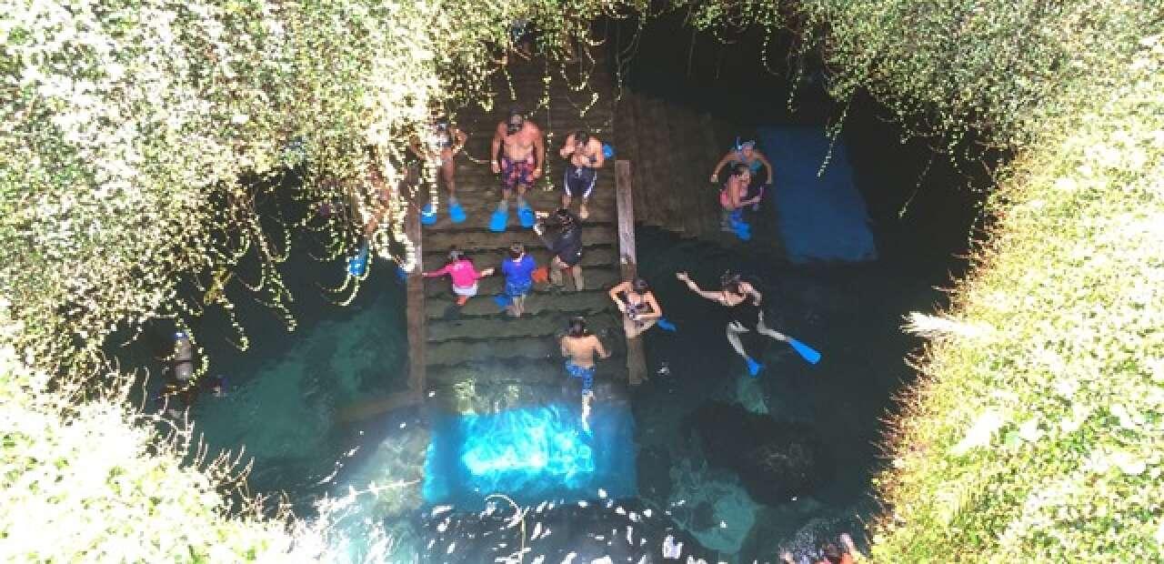 swimming in a pre-historic pool