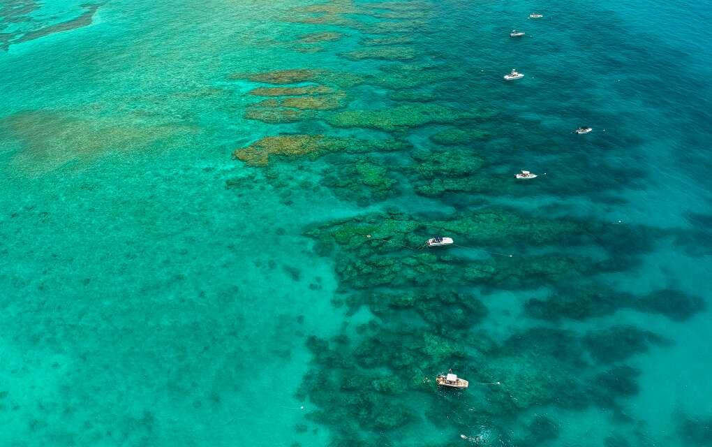 Florida Keys, Looe Key