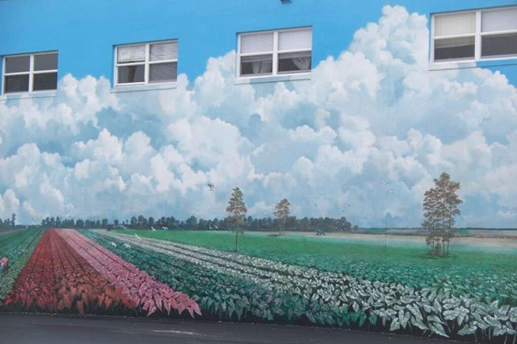 colorful murals in Lake Placid