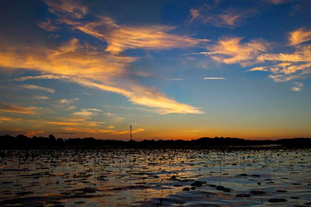 Calm Lake Istokpoga