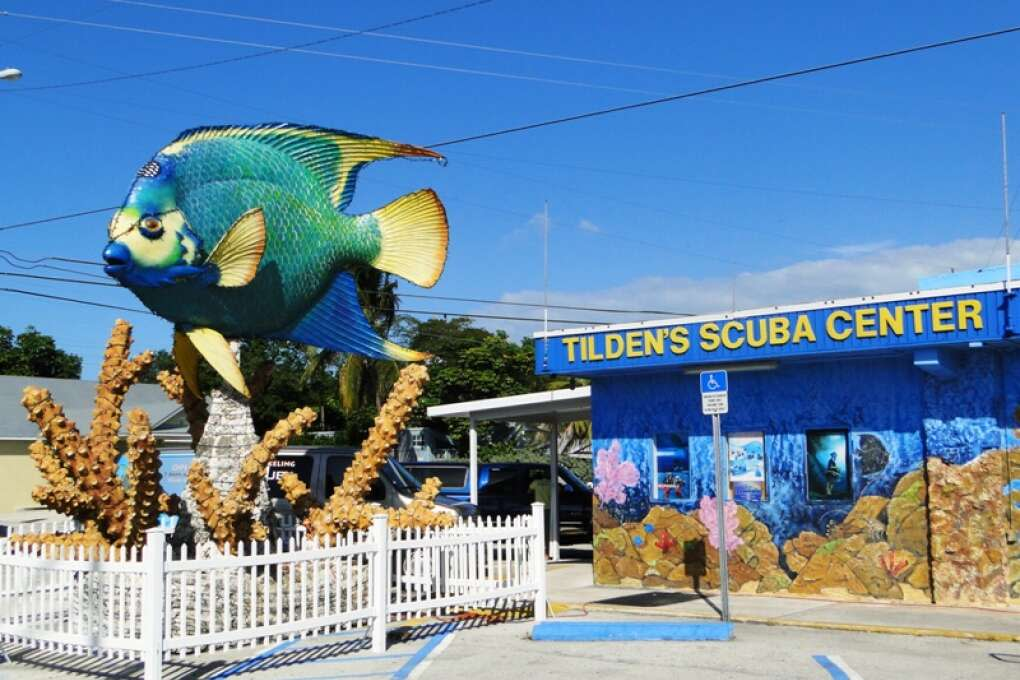 For a snorkeling adventure visit Tilden's Scuba Center for one of Marathon's Florida points of interest
