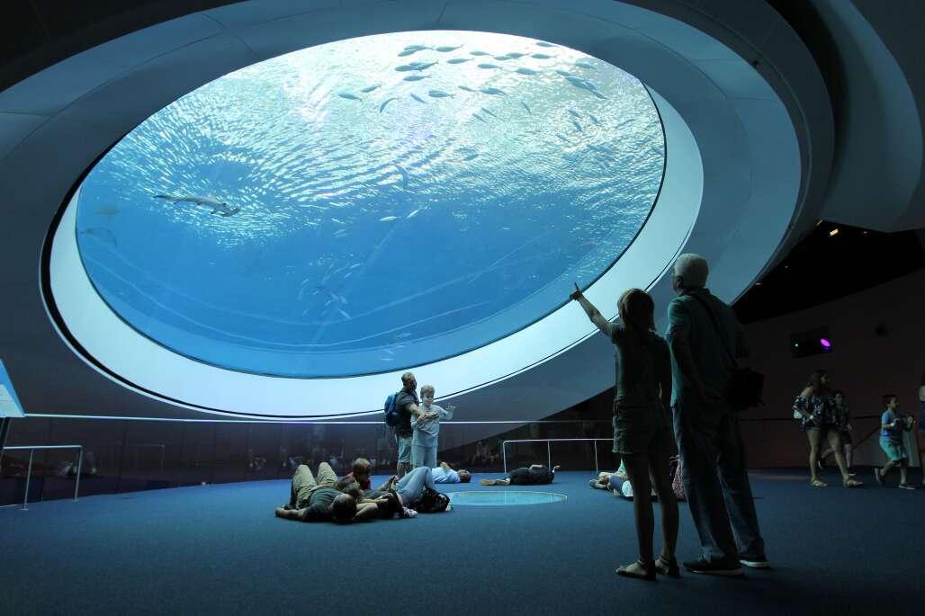 Frost Museum in Miami includes a planetarium and aquarium