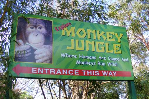 Look for the big sign to welcome you to Monkey Jungle.