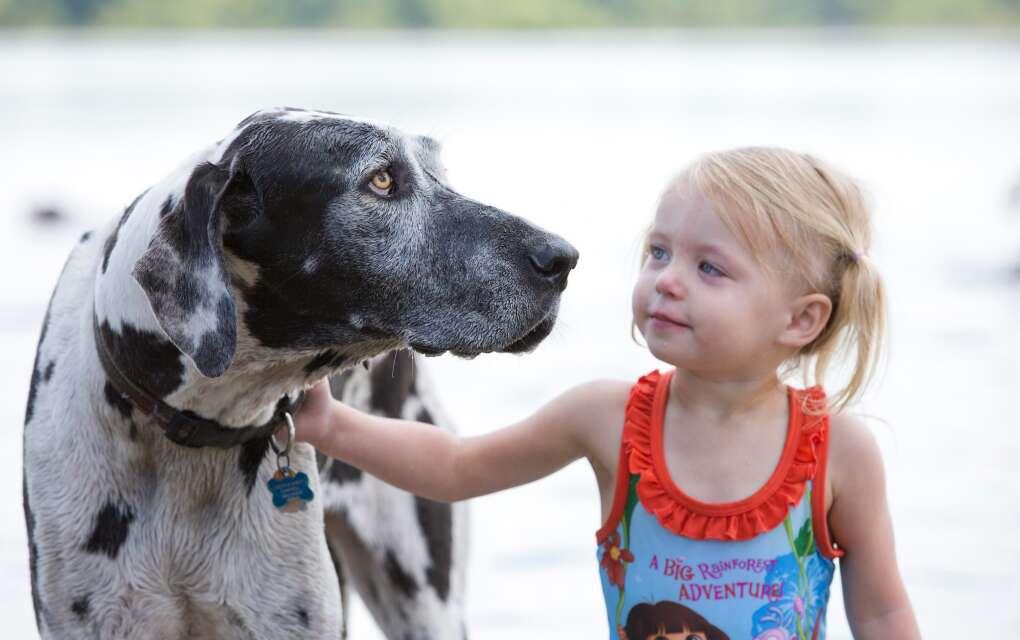Lake Baldwin Park, child and dog