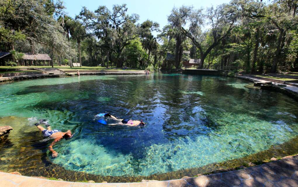 snorkeler in clear water of Juniper Springs, Ocala National Forest