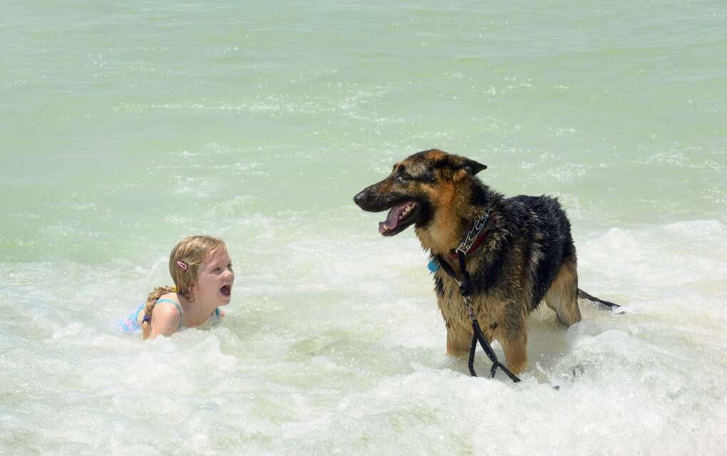 dog and girl playing in the water at Panama City Beach