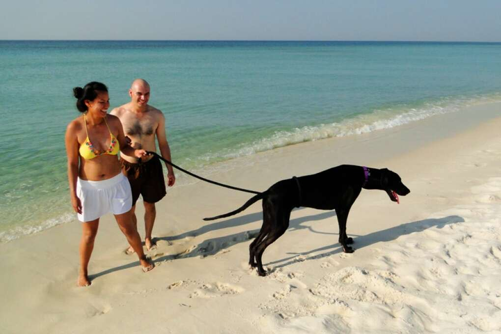 Pensacola_Beach_Sugar-Sand_Beaches_Blue_Angels_History_credit_Lauren_Tjaden (4)