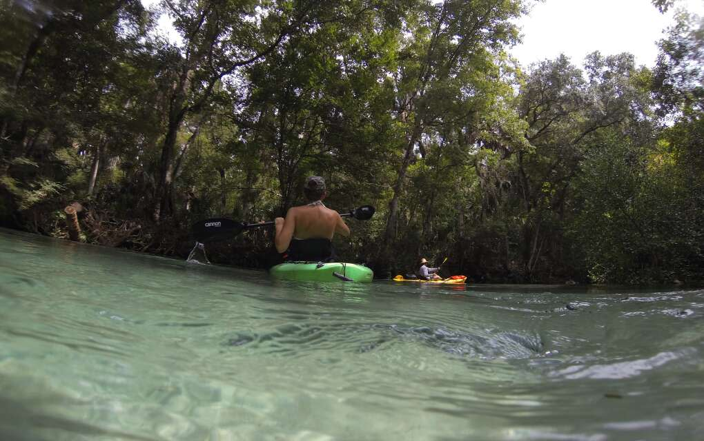 view of water and kayaker on Weeki Wachi River