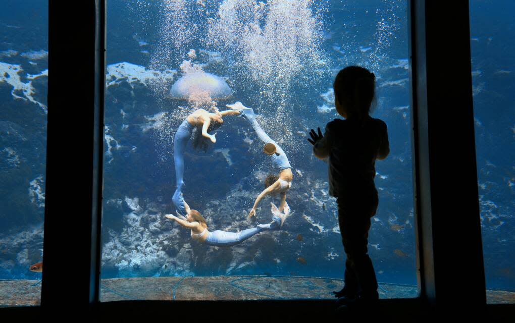 Child watching the mermaid show at Weeki Wachee Springs State Park which is only about an hour from Tampa