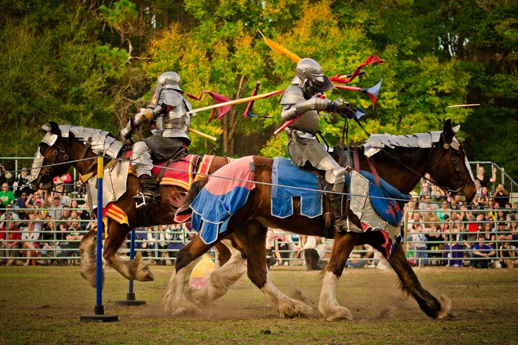 See jousting, artisans, living chess old world feats such as falconry, juggling and knife throwing at the Hoggetowne Medieval Faire in Gainesville.