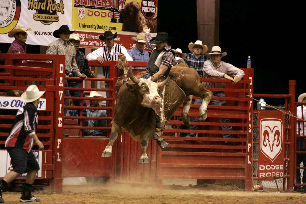 The Southeastern Circuit Rodeo Finals in Davie features some of the top rodeo performers in exciting events that include bareback riding, steer wrestling, team roping, saddle bronc riding, tie-down roping, barrel racing and bull riding.