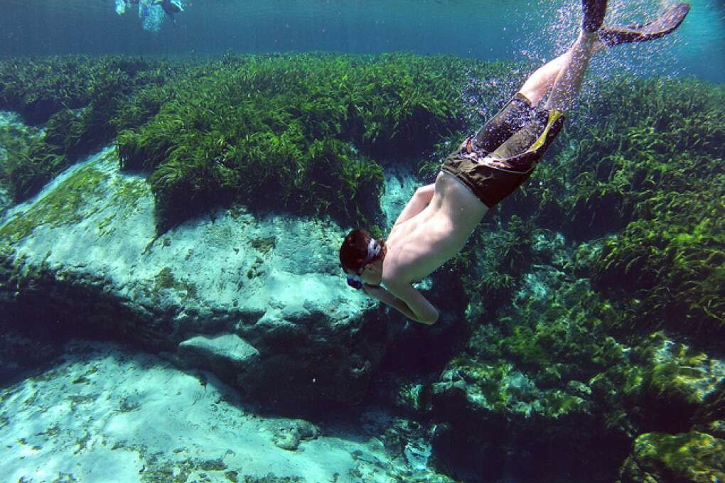 Man diving deep in Alexander Springs in the Ocala National Forest in Florida