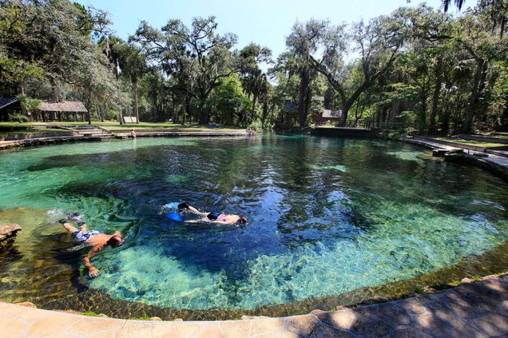 Beautiful view of people swimming in Juniper Springs