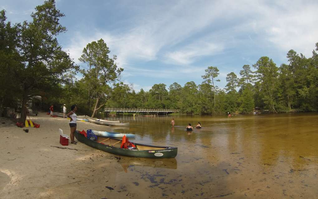 scene from the shore of the tannic-colored Blackwater River