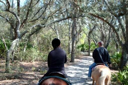 florida equine ranches - horseback riding trails