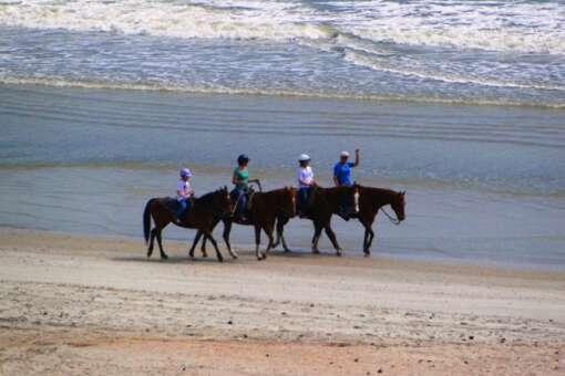 horseback riding beaches in florida