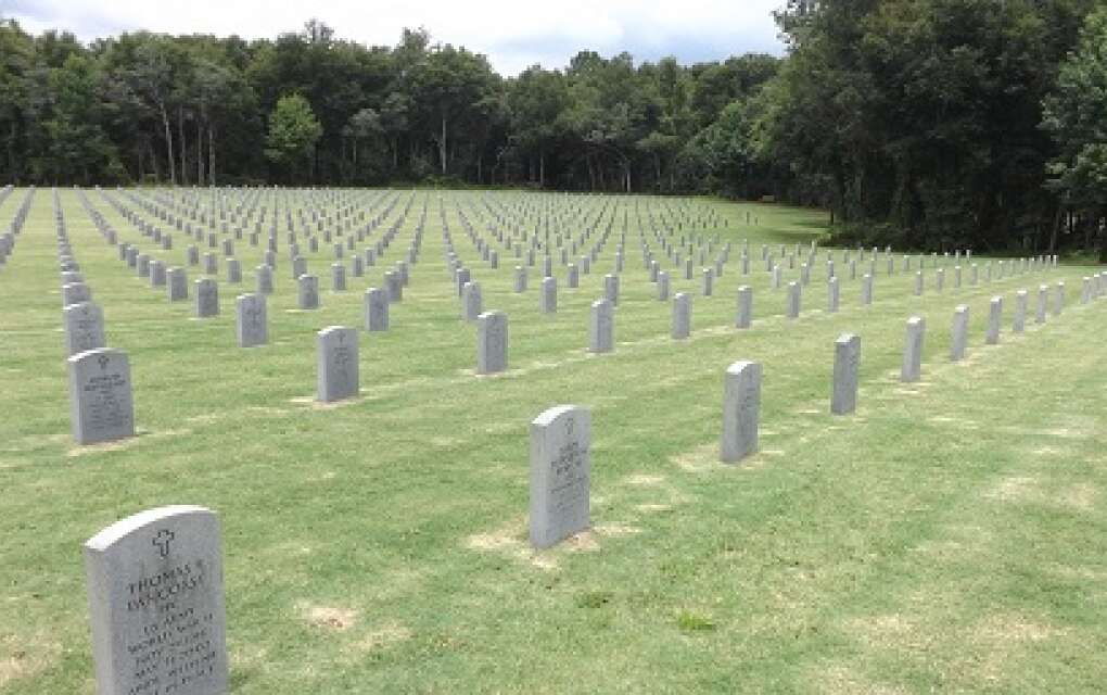 Headstones at Florida's National Cemetery