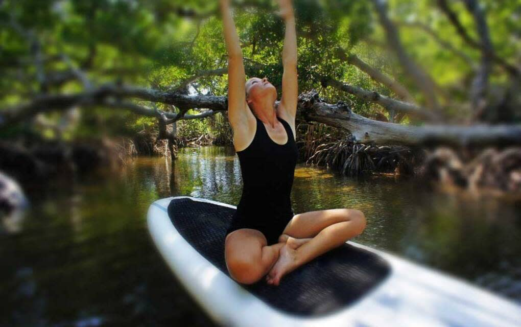 Honest Eco Sustainable Nature Tours, woman doing yoga on paddleboard in a mangrove forest