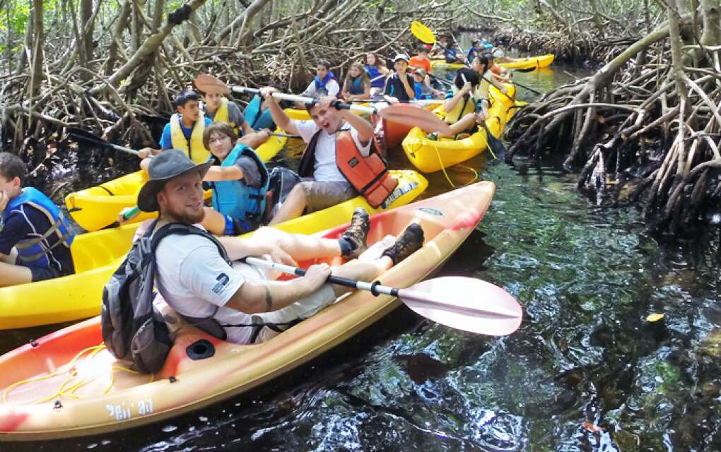 Deering Estate leads guided kayak tours in mangrove forest