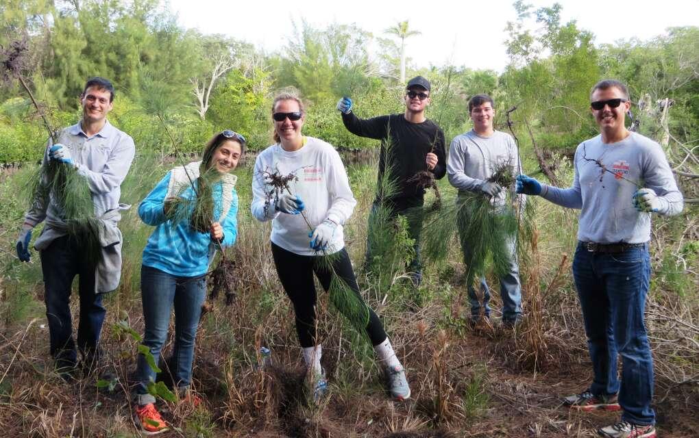people planting trees with the Sarasota Bay Estuary Program