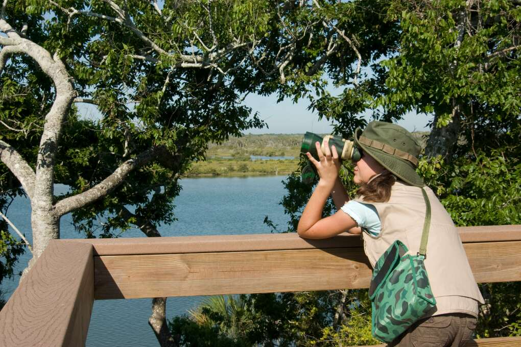 The Great Florida Birding Trail