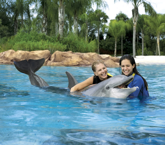 Girls swimming with a dolphin at SeaWorld