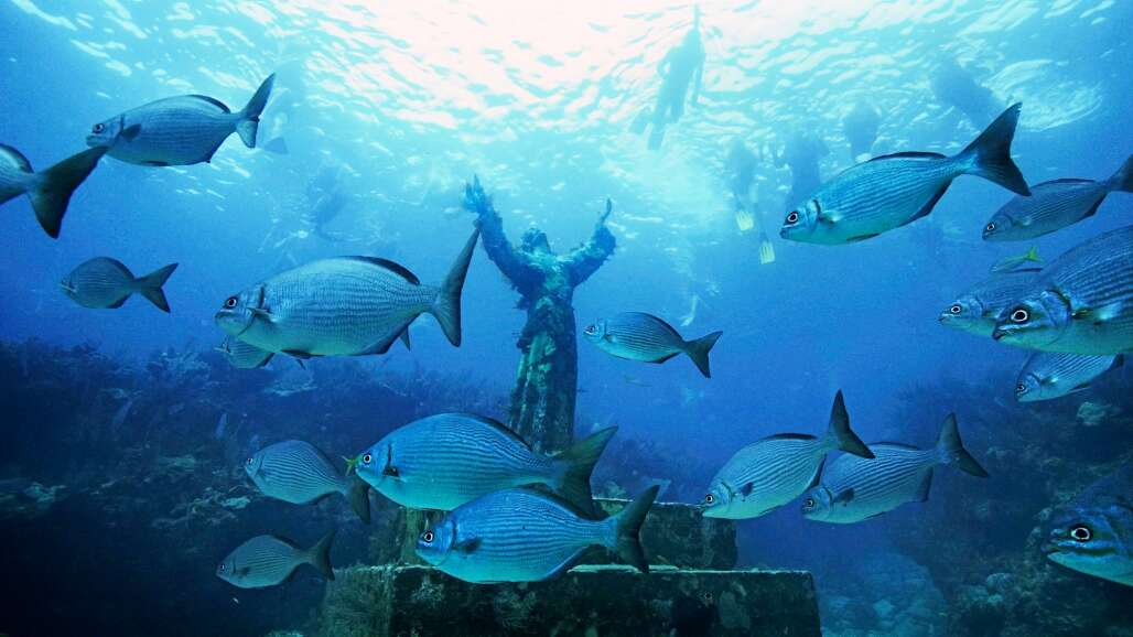 John Pennekamp Coral Reef State Park in Key Largo is a popular place for novice and experienced snorkelers.
