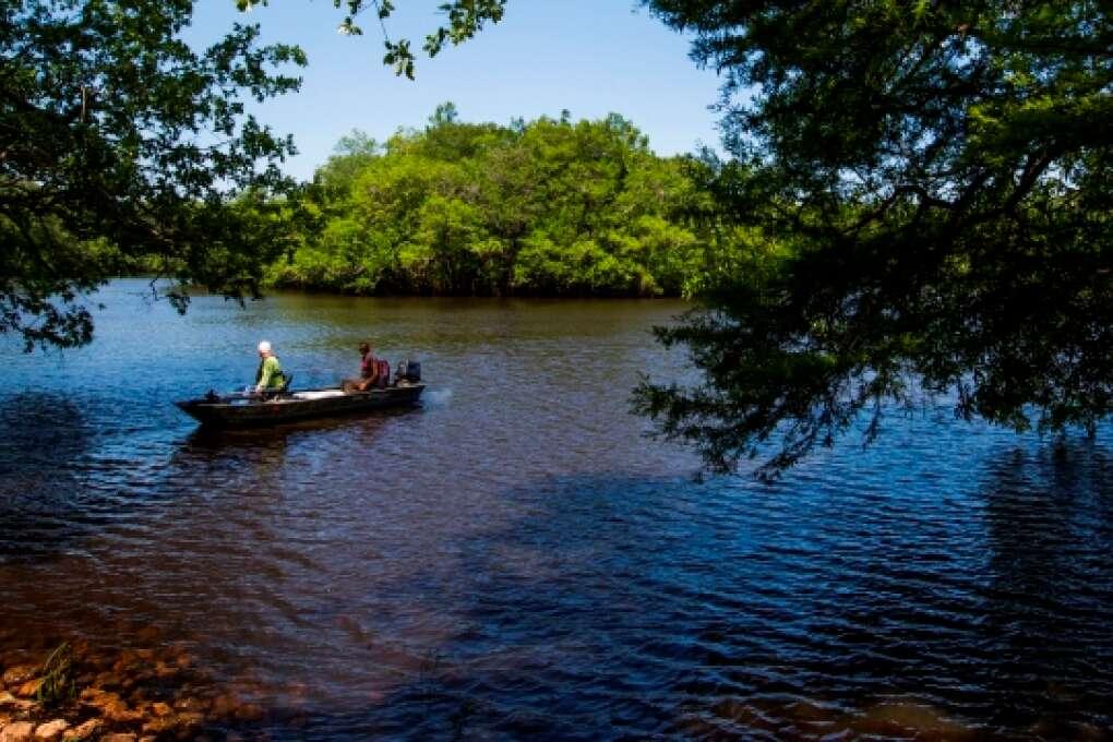 kayaking Apalachicola National Forest