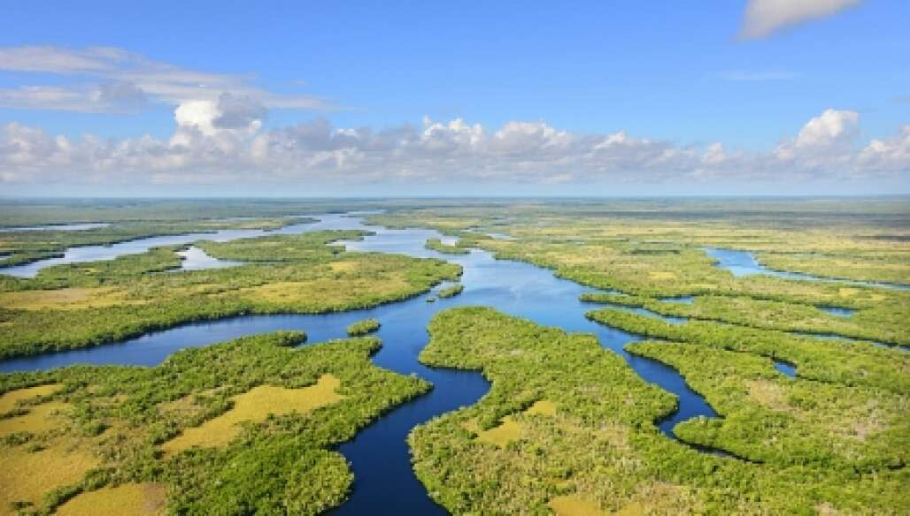 Everglades National Park, Fl. -- Tarpon Bay, looking South West towards Florida Bay. Photo by