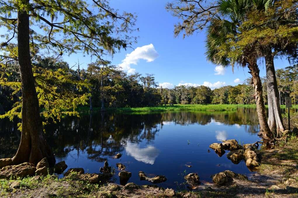 Fisheating Creek Florida
