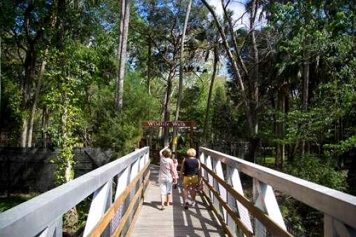 homosassa-springs-state-park-photo-walkway