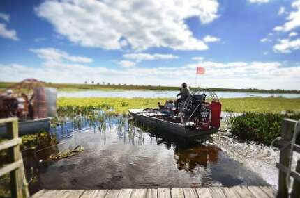 From the docks at Eagle Bay Airboat Rides, Captain Troy will take you out on Eagle Bay for an adventure of full of widlife and natural Florida beauty.