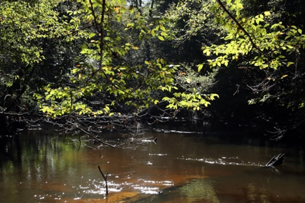 A portion of the Spring Run Trail parallels Sandy Creek at Ponce de Leon Springs State Park.