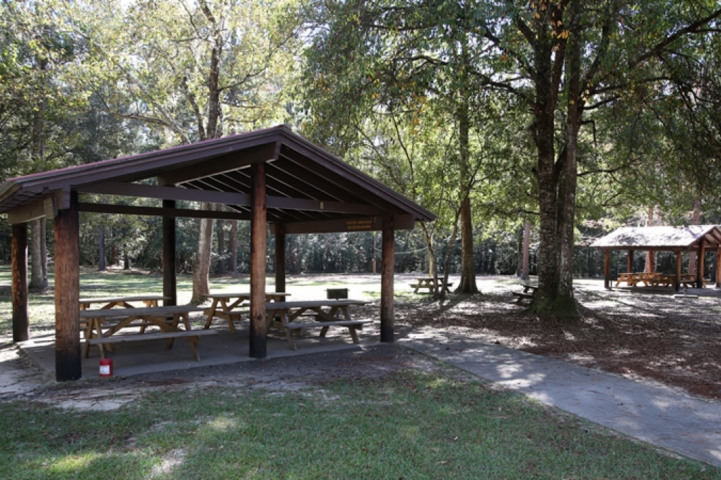 Pavilions are available for reservations at Ponce de Leon Springs.