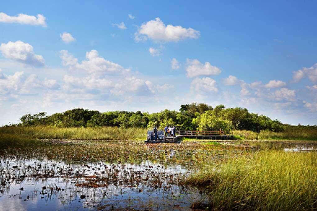 En hidrodeslizador por los Everglades.