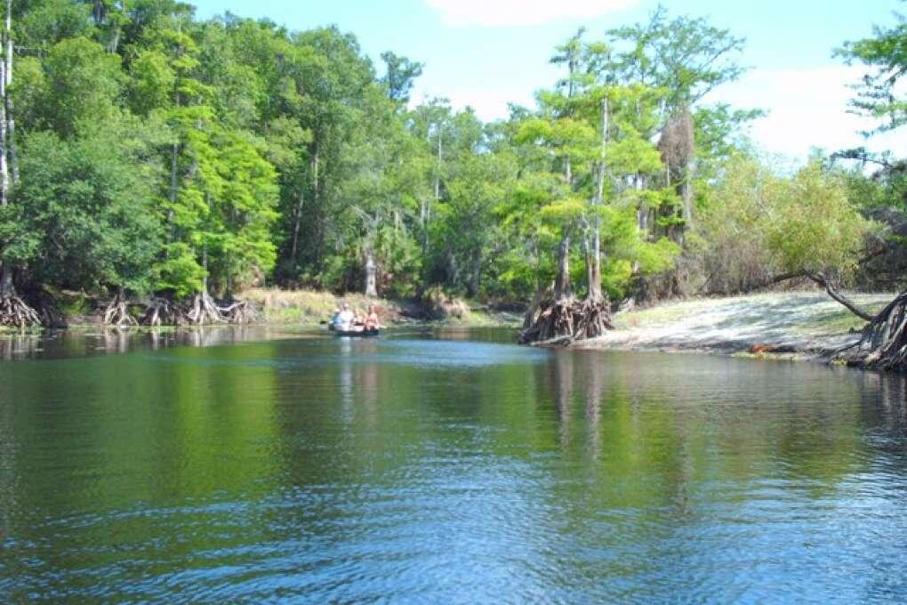 Bird Watching Locations in Florida