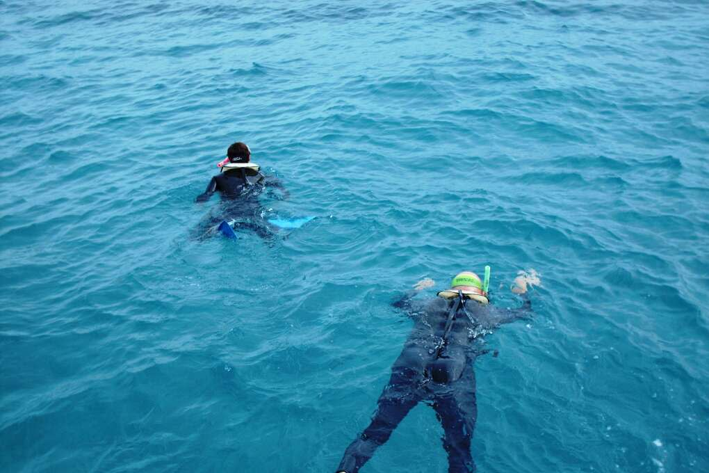 Snorkeling the clear, emerald-hued waters of Key West is a must-do.