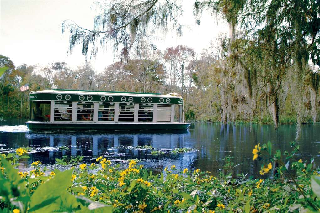 Top Waterways for Perfect Florida Vacation - Glass Bottom Boat Tour
