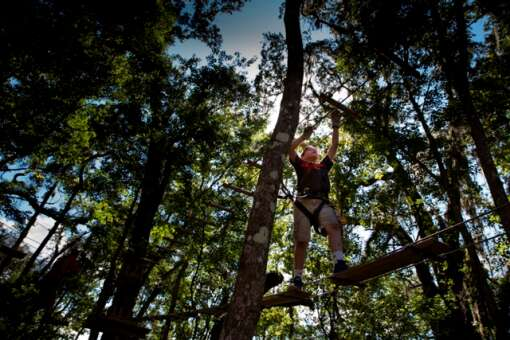 Working his way through the forest young guest makes his way across an element at TreeHoppers Aerial Adventure Park on September 20, 2015 in Dade City. VISIT FLORIDA/Scott Audette